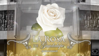 THE-ROSE-OF-GUADALUPE.jpg