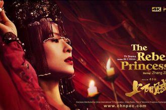 The-Rebel-Princess.jpg