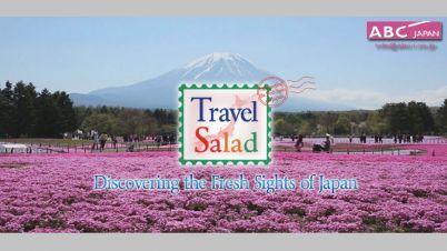 Travel-Salad_main.jpg